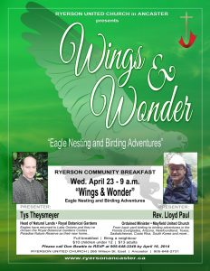 Wings & Wonder Flyer Image